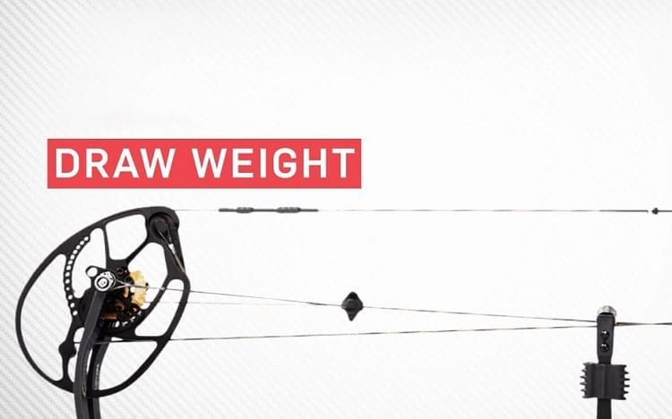 Bow Draw Weight