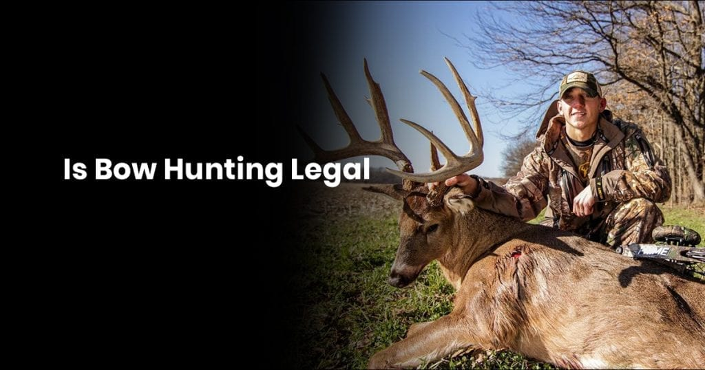 Is Bow Hunting Legal