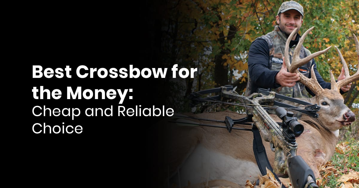 Best Crossbow for the Money- Cheap and Reliable Choice