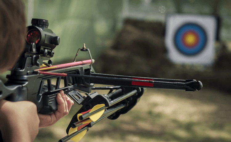 Aiming Target With Crossbow