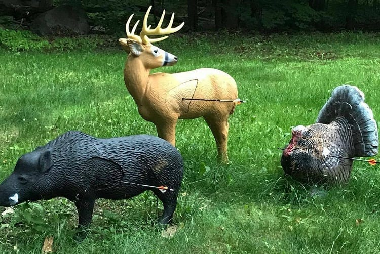 Different Archery Targets